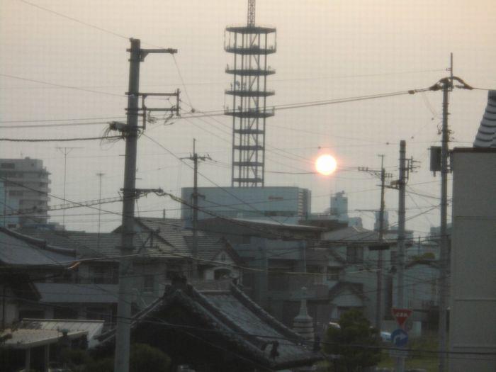 sun2011.jpg